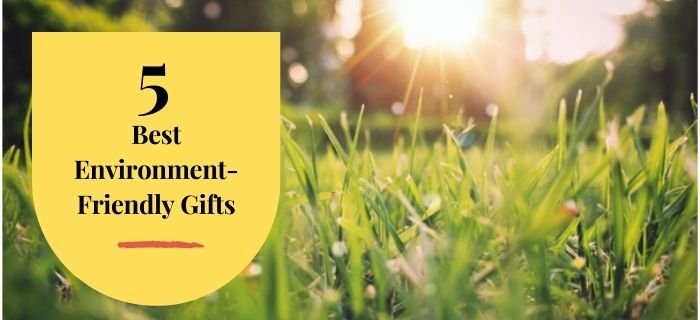 What Are The 5 Best Environment-Friendly Gifts?