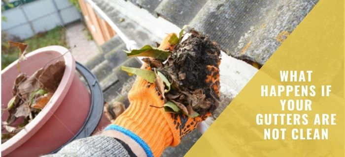 What Happens if your Gutters are not Clean