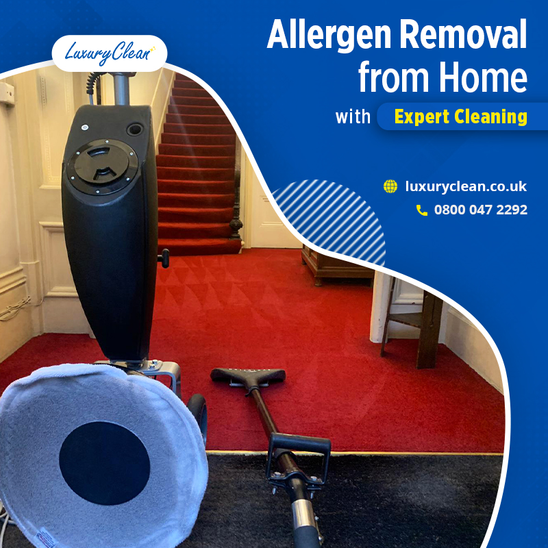 Carpet Cleaning South Croydon