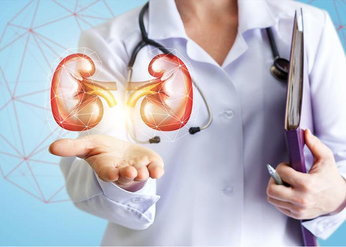 nephrology EHR software