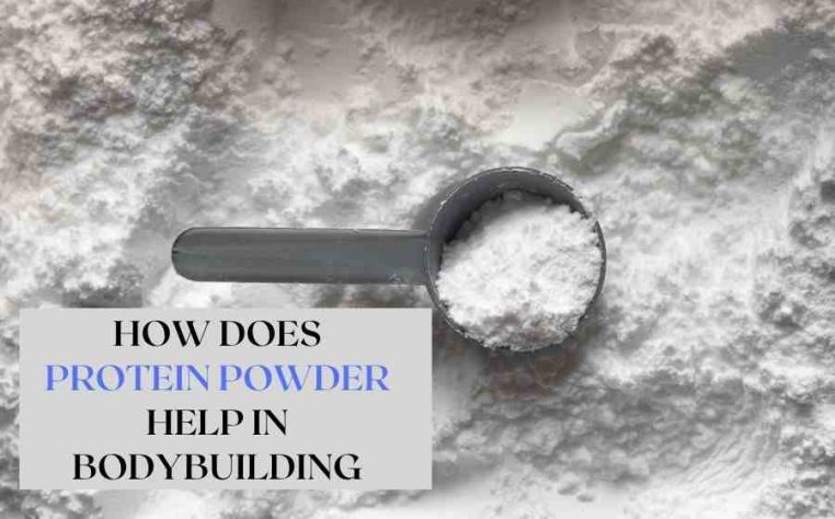 How does protein powder help in bodybuilding