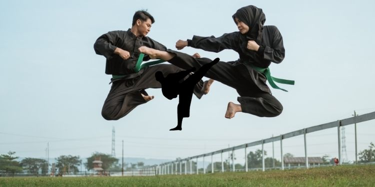 The Beauty Of Martial Arts