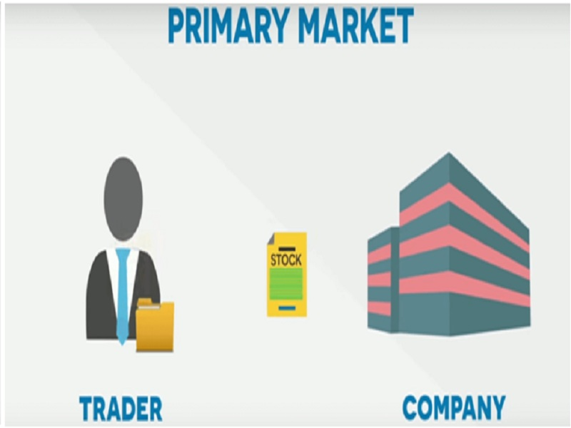 What is the primary market?