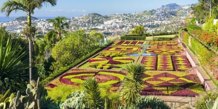 5 Reasons Why You Should Go To Funchal and Hire a Car