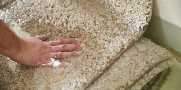 Add Value to floors in homes & offices with the best Carpets Services